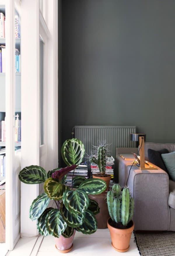 groen-in-huis