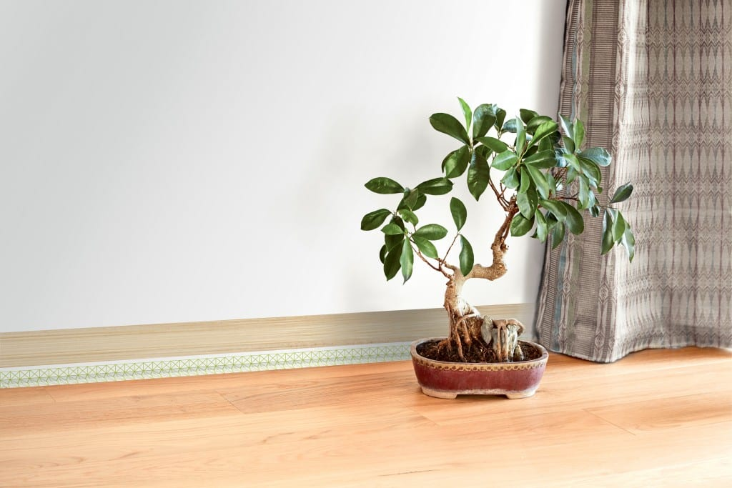 MAPLINTHE-DECO bamboo style HD