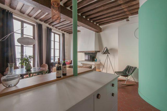 cuisine-ouverte-appart-paris_5397723