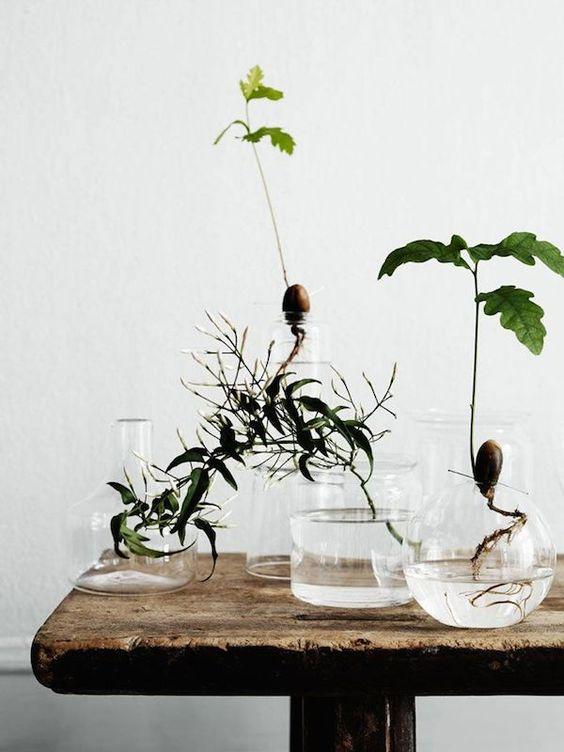 Accumuler les vases transparents dans la décoration intérieure
