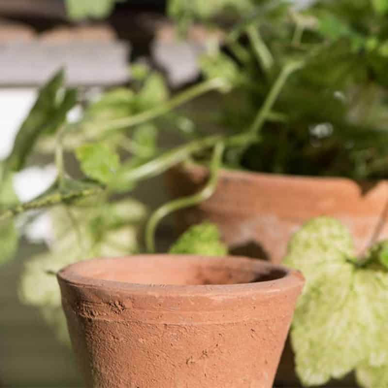 Set de petits pots en terre recycl hemoon maison d co - Petit pot terre cuite ...