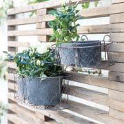 jardiniere-ambiance1