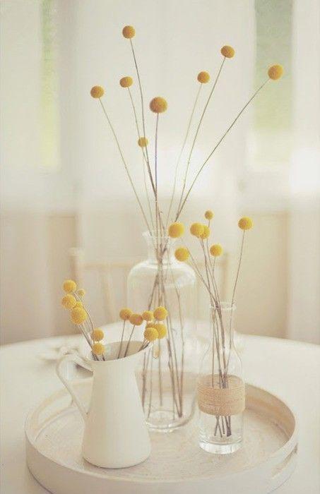 Inspiration Craspedie dans la décoration intérieure